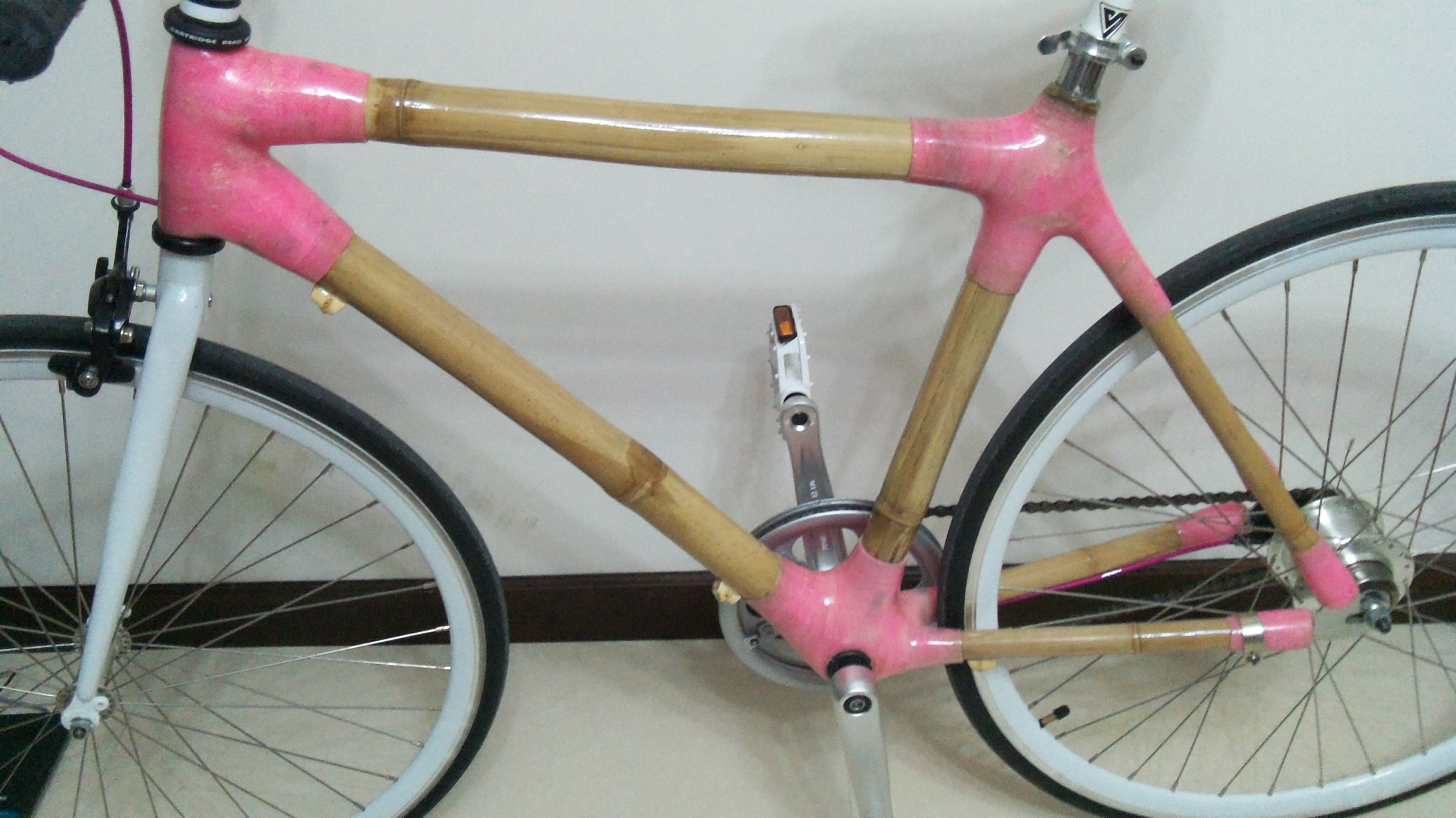 Anne's new bamboo bike