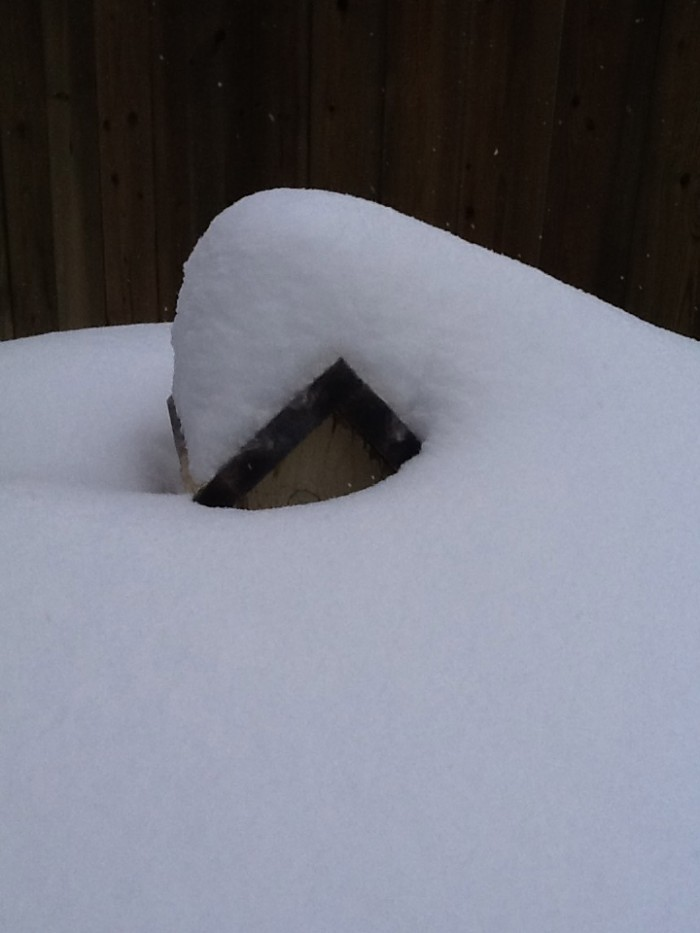 The birdhouse, almost buried with snow again