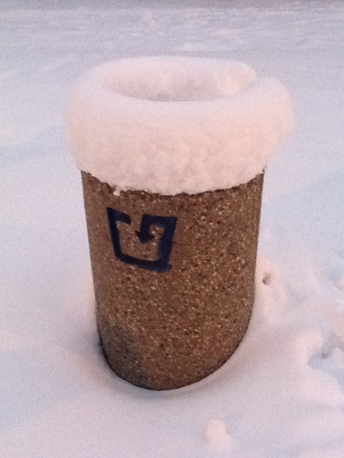 Snowy Garbage Can