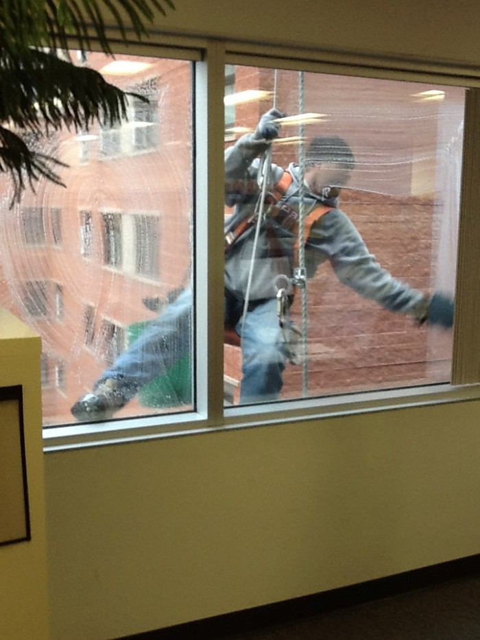 Window Cleaning Day