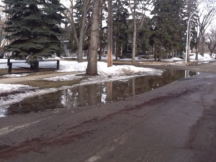 The puddle at 106 Ave and 126 street