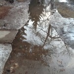 The enormous puddle outside the Guides and Pathfinders Hall