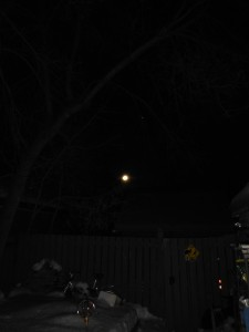 Moon & Backyard