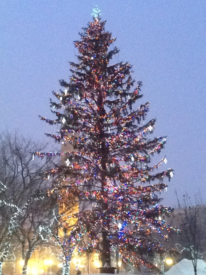 Christmas Tree in Churchill Square