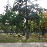 107th Avenue Graveyard