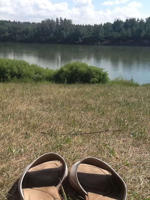 My shoes at Government House Park